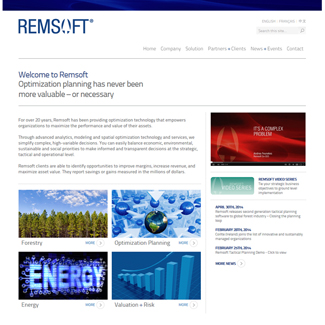 Web Design Remsoft