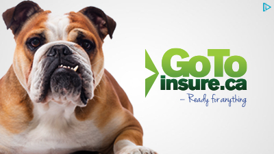 GOTOINSURE.ca AdWords